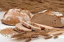Brot aus Goldblumenweizen